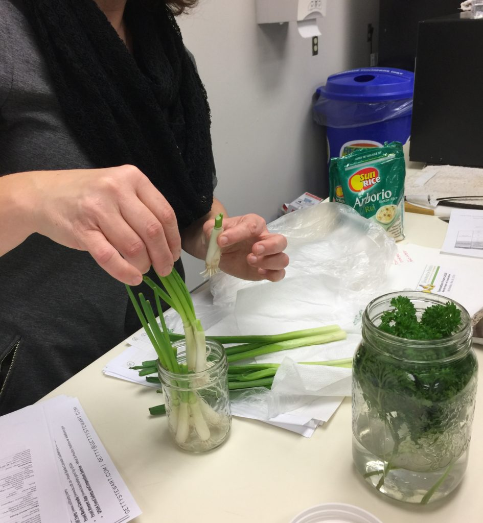 Getty Stewart (gettystewart.com) talked about food storage and best before dates with School nutrition prgm coordinators. She showed us how to properly store herbs and how to regrow green onions!!